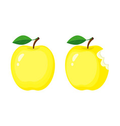 whole and bitten yellow apples vector image