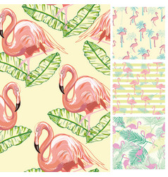 set seamless backgrounds with pink flamingos and vector image