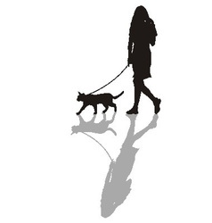 Woman with a cat on a leash vector image