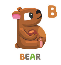 b is for bear letter b bear cute animal alphabet vector image