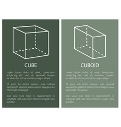 cube and cuboid geometric shapes simple figures vector image