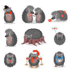 Cute hedgehogs set sweet gray animals cartoon vector