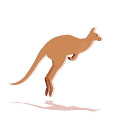 kangaroo icon cartoon endangered wild australian vector image
