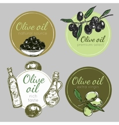 Hand Drawn Olive Oil Label Set vector image vector image