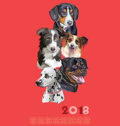 postcard with dogs of different breeds-5 vector image vector image