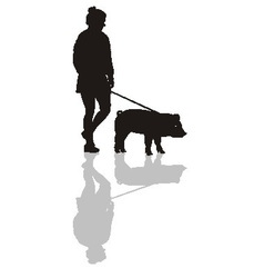 Woman with a pig on a leash vector image