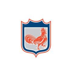 Chicken Rooster Leg Up Walking Shield Retro vector image vector image
