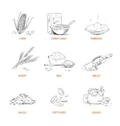 Doodle cereals groats porridge muesli vector image