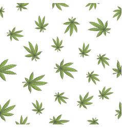 Seamless texture marijuana four vector
