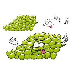 Cartoon green grape bunch character vector image