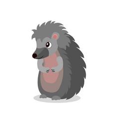 cute hedgehog standing on two legs sweet animal vector image
