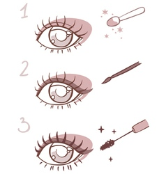 sequence of stages eye makeup vector image