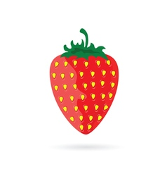 Strawberry fruit color red vector