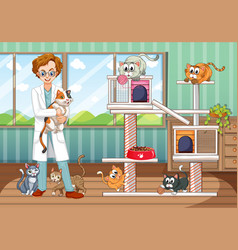 Vet and many cats in animal home vector