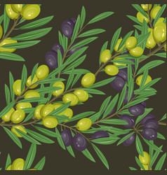 branches with leaves and olive berries vector image vector image