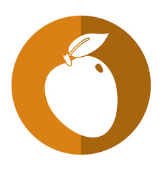 Apple ripe fruit icon shadow vector
