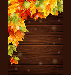 Autumn leaves on background wooden boards vector