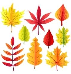 Autumn retro leaves set vector image
