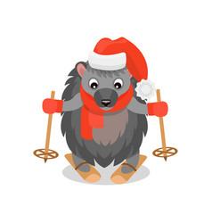 cute hedgehog skiing funny animal cartoon vector image