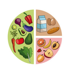 diagram healthy food image vector image
