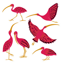 folk patterned isolated ibis set vector image