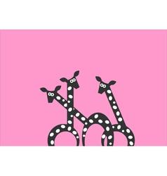 Funny giraffes vector image