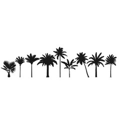 palm trees silhouette retro coconut trees hand vector image