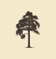 Pine hand drawn silhouette sketch vector