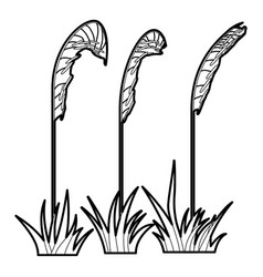 three plants icon outline style vector image