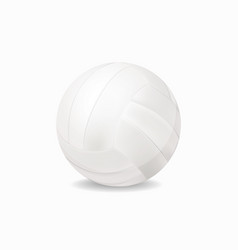 white volleyball vector image
