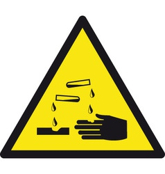 Danger Corrosive Safety Sign vector image