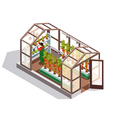 Isometric greenhouse with glass walls vector