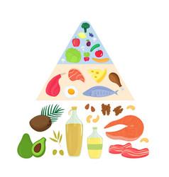keto food pyramid ketogenic nutrition concept vector image