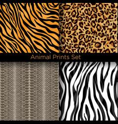 set animal skin seamless vector image