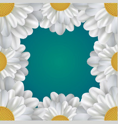 square frame with daisies and a place for text vector image