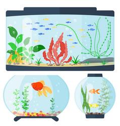 Transparent aquarium habitat vector