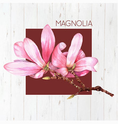 watercolor magnolia flower vector image