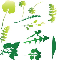 Weed 03 resize vector