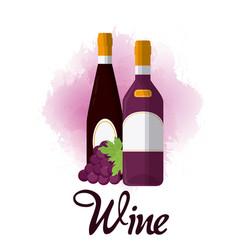 Wine luxury bottles vector