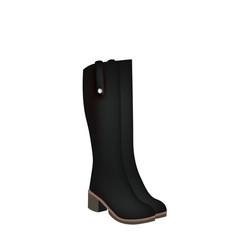 women boots vector image