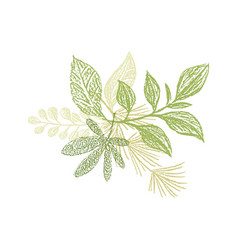 floral hand drawn composition plant leaves vector image vector image