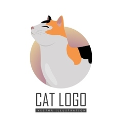 Calico Cat Flat Design vector image vector image