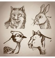 collection animals doodle vintage design vector image
