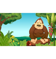 A gorilla in the woods vector image vector image