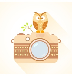 camera and owl vector image vector image
