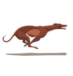 minimalist image of a running greyhound vector image