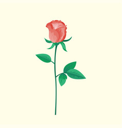 vintage pink rose flower can be used as greeting vector image