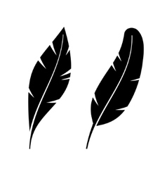 Two Icon Style Feathers vector image vector image