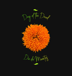 day of the dead with marigold vector image