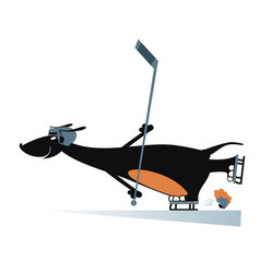 dog an ice hockey player isolated vector image